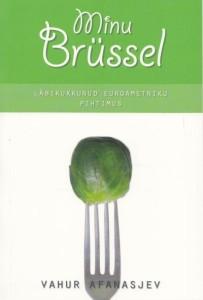 minu-brüssel
